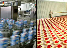 industries food processing